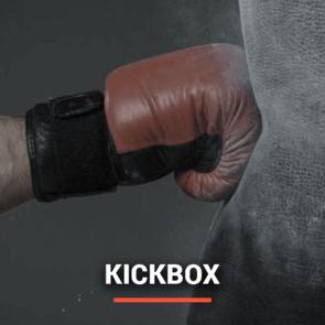 kickboxer-inhuren