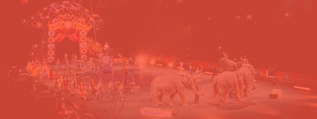 Hoe word je een succesvolle circusartiest
