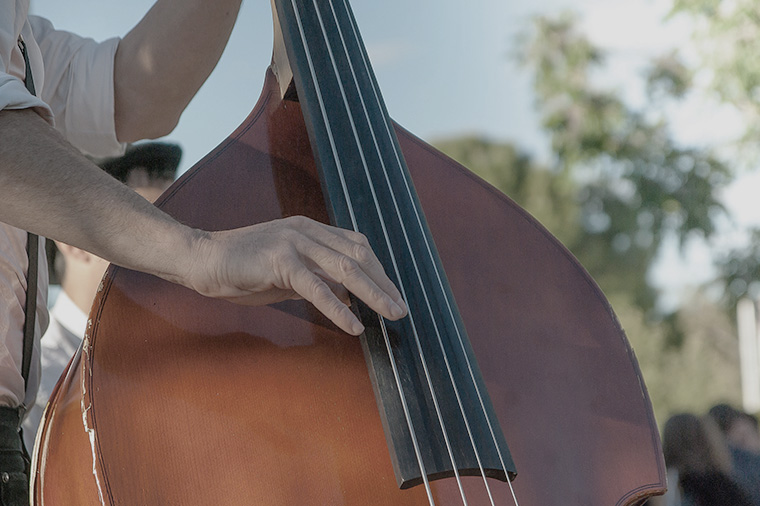 Muzikant - Bassist